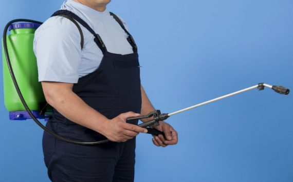 Steps To Take To Find A Good Pest Control Company