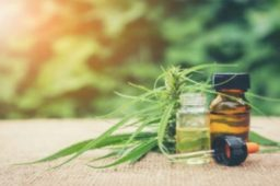 Where Can You Find CBD Capsules in Van Nuys?