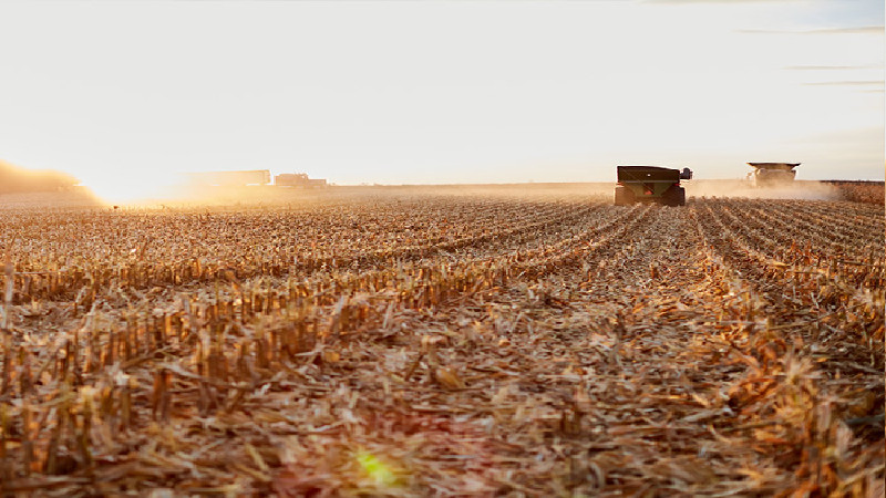 Give Your Crops Care with Seed Treatment in Vernon County, WI